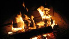 Какие дрова горят лучше